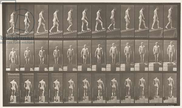Plate 74. Ascending Incline, Angle 1 in 4, 1872-85 (collotype on paper)