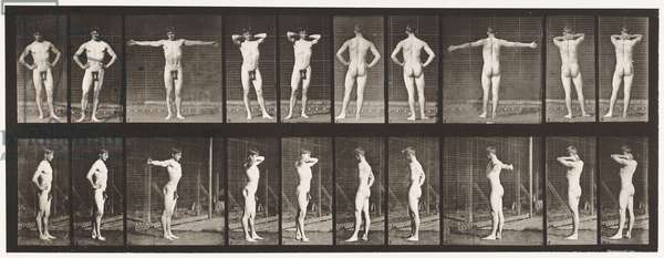 Plate 529. Various Poses, 1872-85 (collotype on paper)