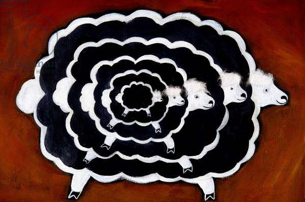 Cloning: Abyme of a sheep.