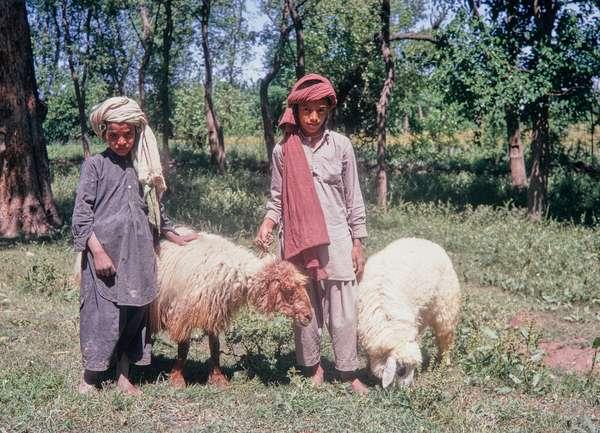 Muslim children, Baluchi, Pakistan, 1969 (photo)