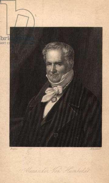 Alexander von Humboldt (1769-1859), engraved by Hinchliff  (litho)