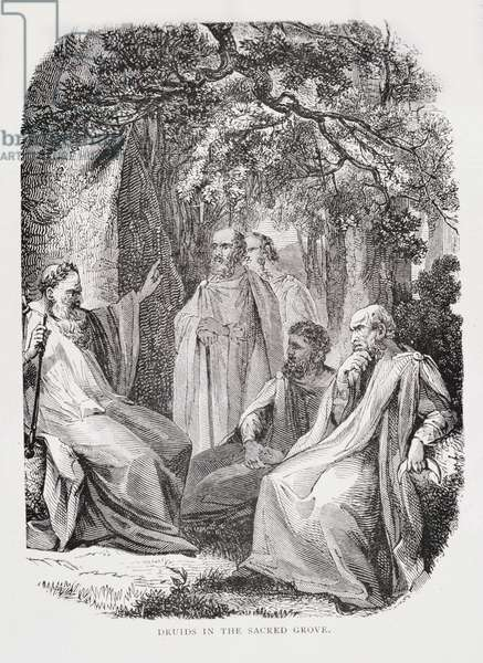 Druids in the Sacred Grove, from 'The History of France', by Emile de Bonnechose, published by Ward, Lock and Co, London (engraving)