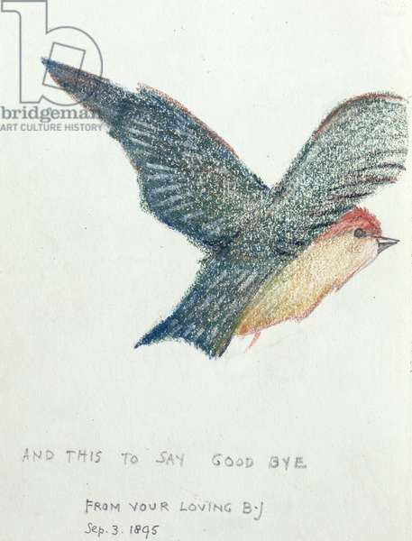 'And this to say good bye', 1895 (pencil & coloured chalk on paper)