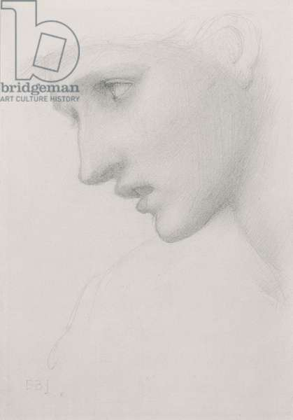 Female head in profile to the left (pencil on paper)