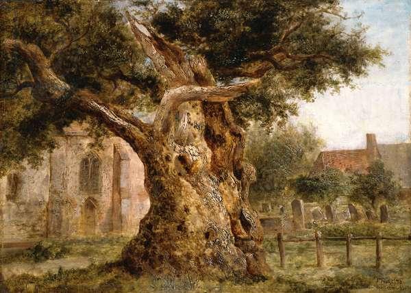 The Old Oak, 1870 (oil on board)