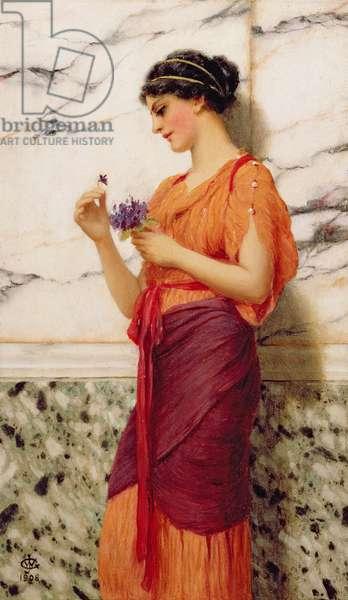 Violets, 1908 (oil on panel)