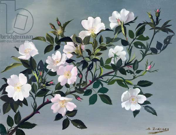 Dog Roses, c.1940 (oil on canvas)