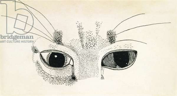 Cats Eyes, 1949 (pencil & black ink on paper)