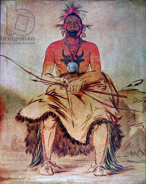 'Buffalo Bull', 1835 (colour litho)