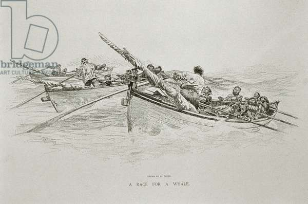 'A Race for a Whale', for 'The Perils and Romance of Whaling' in Century Magazine, June 1890 (litho)