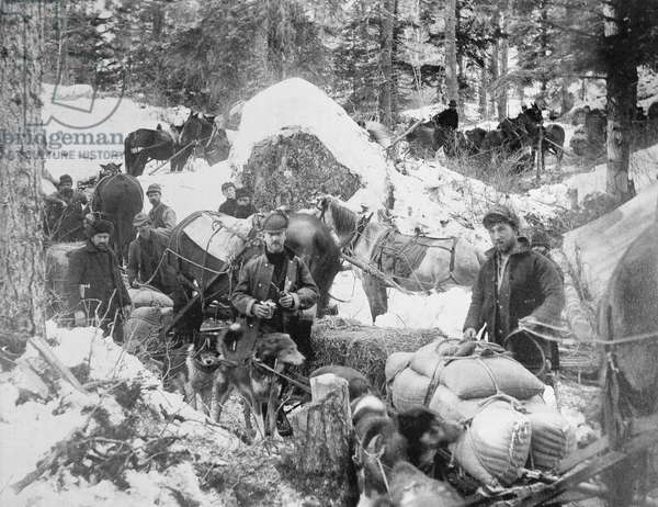 Prospectors ascending Porcupine Hill on the Skagway Trail, Alaska, during the Klondike Gold Rush (1897-98) 1898 (b/w photo)