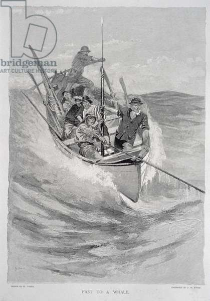 'Fast to a Whale' (whalers securing to their quarry by a harpoon line), for 'The Perils and Romance of Whaling' in Century Magazine, August 1890 (litho)