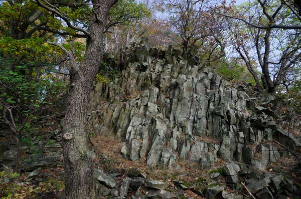 Basalt formation on volcanic slope in Central Bohemian Uplands protected landscape area, Litomerice District, Northwestern Bohemia, Czech Republic(photo)