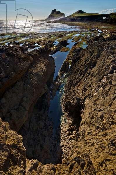 Worms Head & Devil's Bridge, limestone seacliffs, wave-cut platform, Rhossili, Gower, South Wales, United Kingdom (photo)