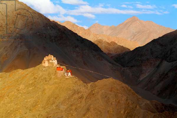 Namgyal Tsemo monastery and fort in the evening light, Ladakh, India (photo)