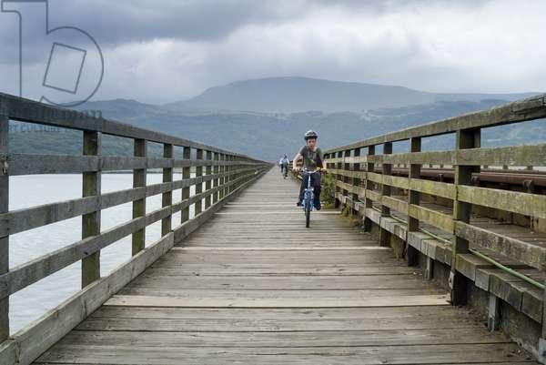 Cyclists on Barmouth Bridge across River Mawddach estuary, Barmouth, Gwynedd, N.Wales, UK (photo)