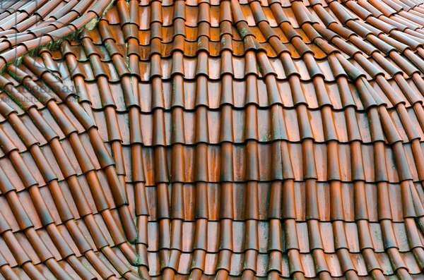 Detail of Baroque curved wet shingle roof in Mala Strana district, Prague, Czech Republic(photo)