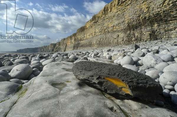 Glamorgan Heritage Coast: Liassic Limestone and Sea Cliffs, Vale of Glamorgan, South Wales, UK (photo)