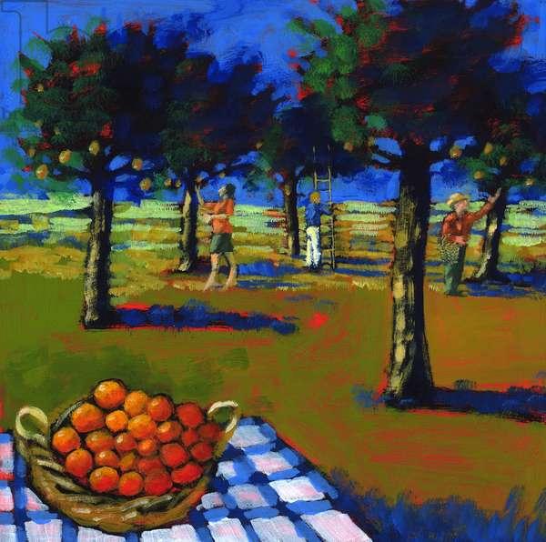 Orange picking, 2008 (acrylic on board)