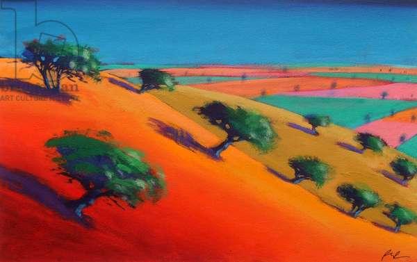 Ragged Stone Hill (acrylic on canvas)