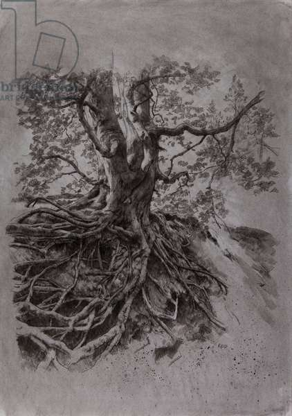 Tree Study II, 2015 (mixed media)