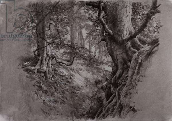 Tree Study III, 2015 (mixed media)