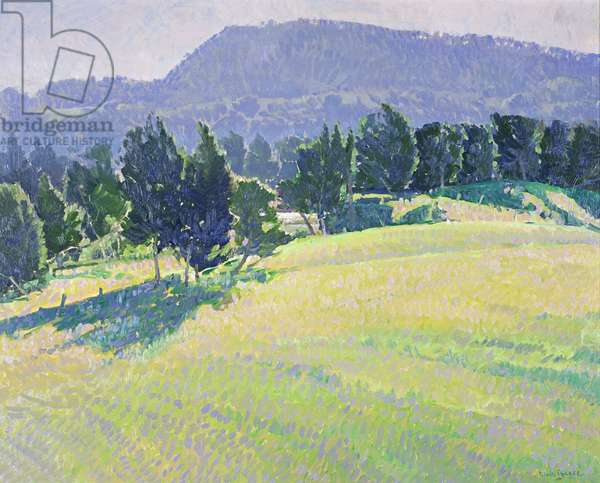 Autumn Light - Kangaroo Valley, 2007 (oil)