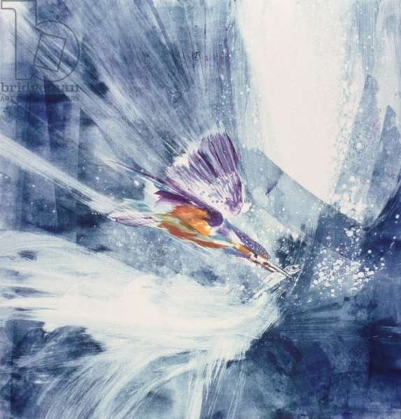 Striking Kingfisher, 2002 (monoprint)