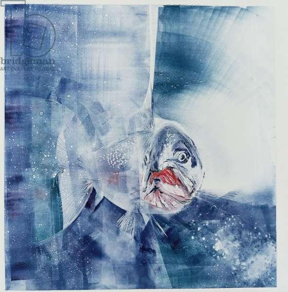 Salmon, 1995 (monoprint)