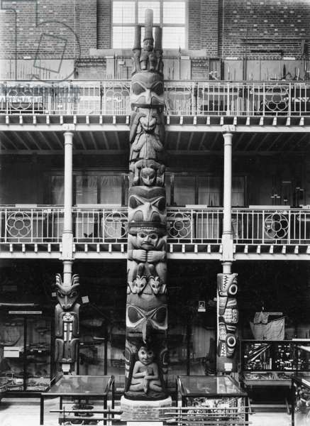 Front view of the Totem-poles in situ in the Pitt Rivers Museum, c.1901 (b/w photo)