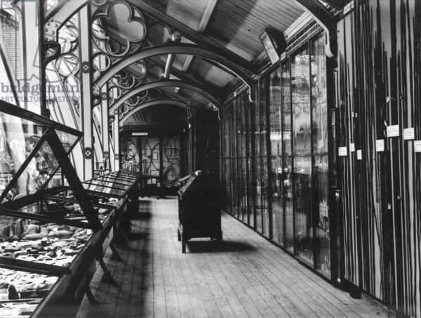 View of south side of upper gallery, looking east, toward 'composite bows' display at the Pitt Rivers Museum, c.1898-90 (b/w photo)