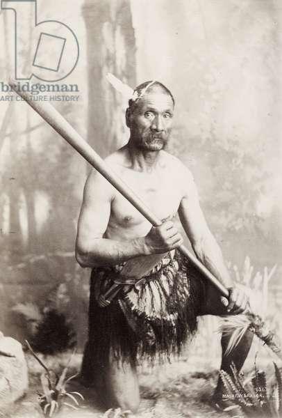 Portrait of a Maori Man, c.1885 (albumen print)