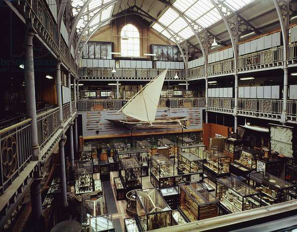 View of museum court of the Pitt Rivers Museum, c.1975 (photo)