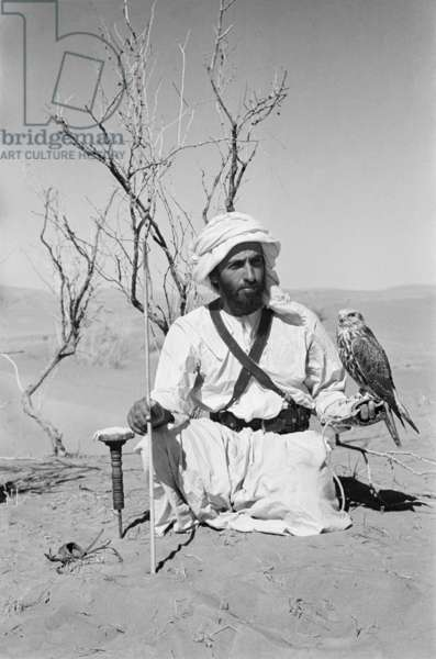 Seated portrait of Sheikh Zayed bin Sultan Al Nahyan with a saker (hurr) falcon in the sands surrounding Al Ain, United Arab Emirates, December 1, 1949 – January 12, 1950 (b/w photo)