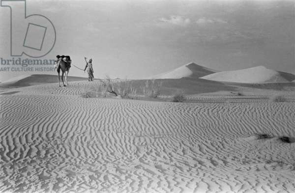 View of one of Wilfred Thesiger's Bedouin companions walking in the Al Khatam sands south of Al Ain, during their journey towards Al Humrah sands, United Arab Emirates, January 28 – February 7, 1949 (b/w photo)
