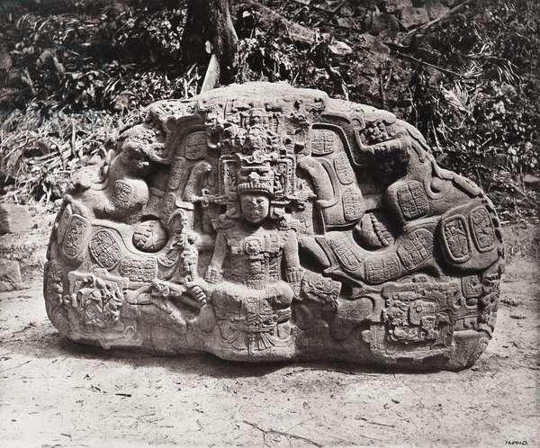 'Zoomorph P', Quirigua, Izabal department, Guatemala, Late Classic period, AD 795 (platinum print)