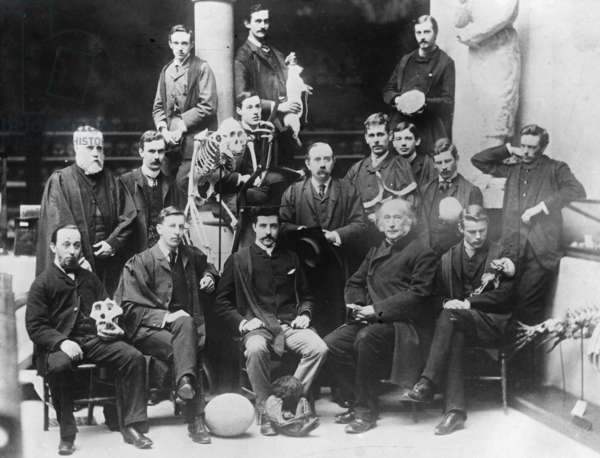 Members of the Human Anatomy and Physiology Class, Oxford University Department of Morphology, c.1884 (b/w photo)