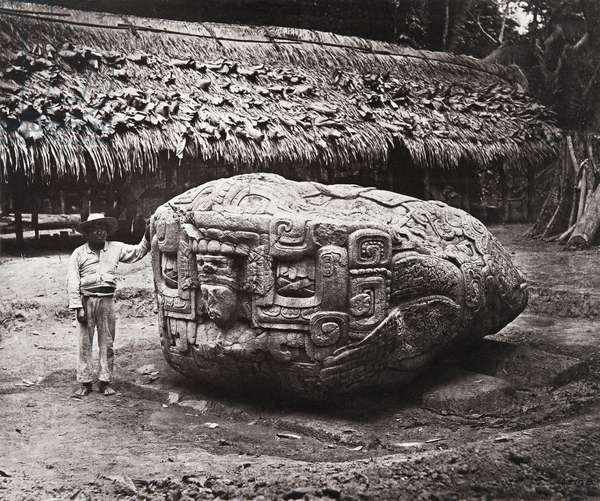 'Zoomorph B', Quirigua, Izabal department, Guatemala, Late Classic period, AD 780 (platinum print)