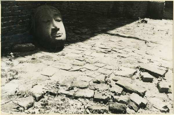 Stone head of the Buddha in the ruins of a temple at Ayutthaya, Thailand, 1937 (bromide print)