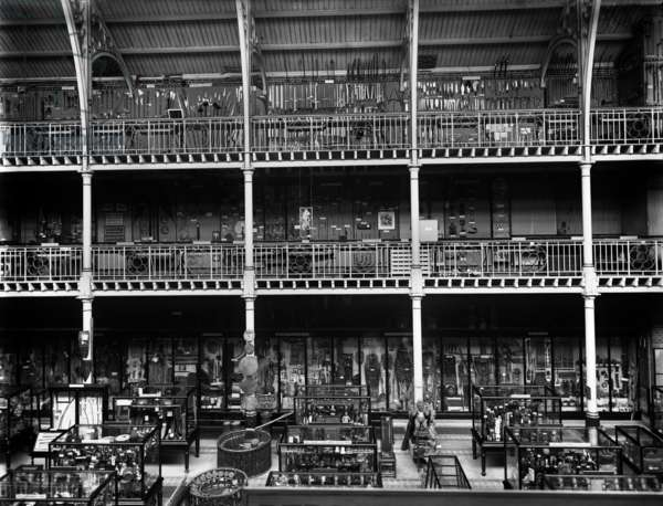 General view of interior showing part of Court with south side of Galleries, Pitt Rivers Museum, Oxford, c.1895-1910 (b/w photo)