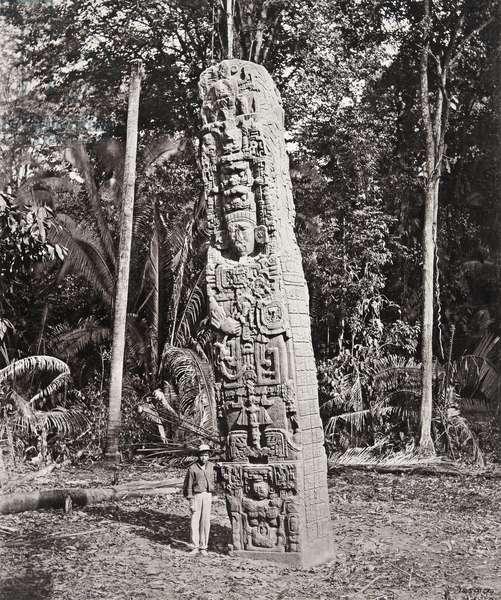 Stela F, Quirigua, 1883 (platinum print)