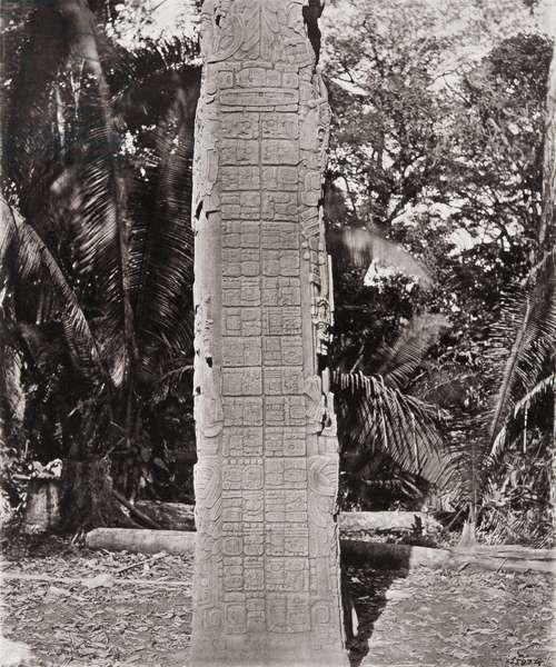 'Stela F', Quirigua, Izabal department, Guatemala, Late Classic period, AD 761 (platinum print)