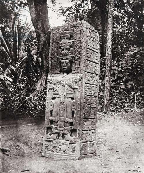 Stela A, Quirigua, 1883 (platinum print)