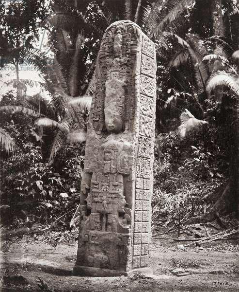 'Stela D', Quirigua, Izabal department, Guatemala, Late Classic period, AD 766 (platinum print)