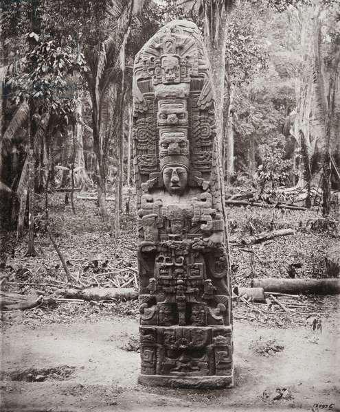 Stela D, Quirigua, 1883 (platinum print)
