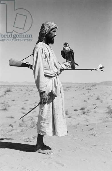 Full length profile portrait of an Arab man, one of Sheikh Zayed bin Sultan Al Nahyan's falconers, carrying a falcon in the sands surrounding Al Ain, United Arab Emirates, December 1, 1949 – January 12, 1950 (b/w photo)