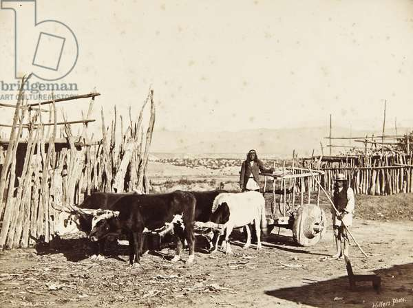 Two men standing with a large wooden cart, known locally as a carreta, being pulled by four oxen, c.1879-80 (albumen print)