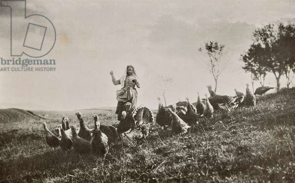 Guardian of turkeys in Vicchio di Mugello, Vicchio, Italy, 1900-1910
