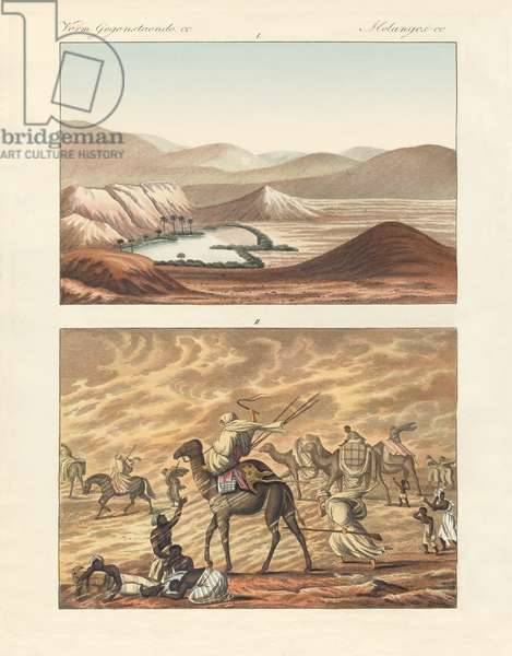 About the Sahara (coloured engraving)