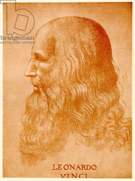 Leonardo da Vinci, 1884-90 (phototype)